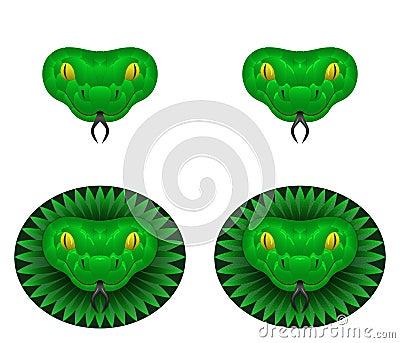 Green snake head Vector Illustration