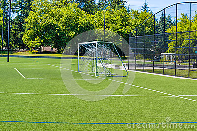 Green Soccer turf