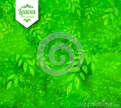Free Green Spring And Summer Background Royalty Free Stock Photo - 72300395