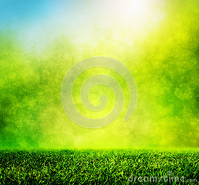Green spring grass against natural nature blur Stock Photo
