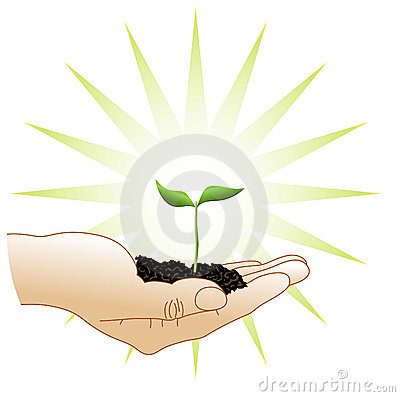 Green sprout in a hand
