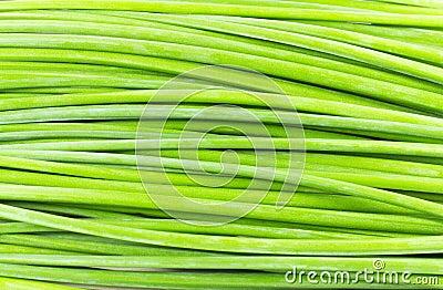 Green stalk