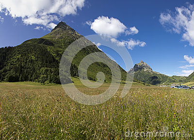 Green Summer Alps Meadow