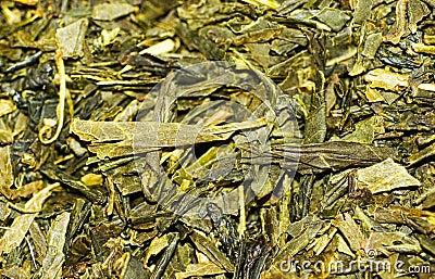Green tea. Background.