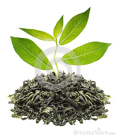 Green tea with leaf