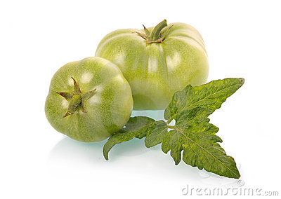 Green tomatoes vegetables with leaves isolated