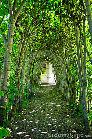 Green Tree Archway
