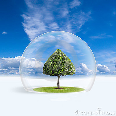 Free Green Tree Is Under The Protection Royalty Free Stock Photography - 7836087