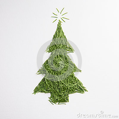 Free Green Tree Of The Needles Royalty Free Stock Images - 83828429