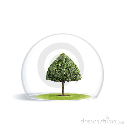 Green Tree is under the protection