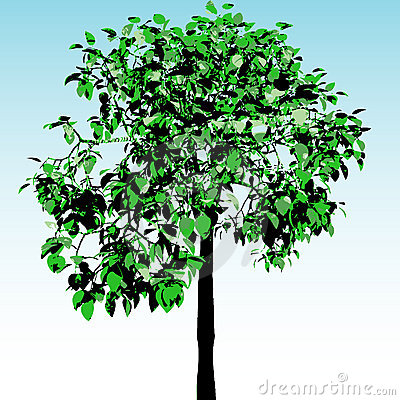 Green tree. Vector.