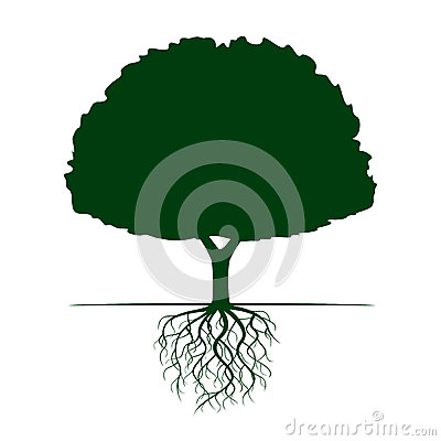 Free Green Tree With Roots. Vector Illustration. Stock Photography - 84094642