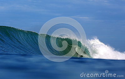 Green tropical surfing wave