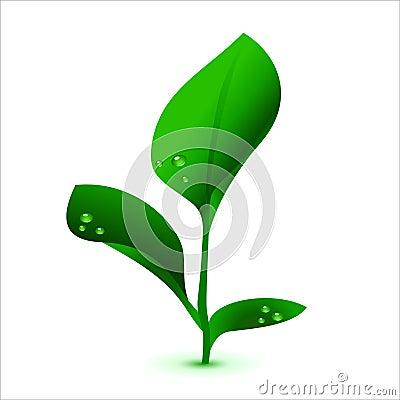 Green vector plant, no mash