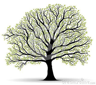 Green Vector Tree Lot Of Leaves Outline Royalty Free
