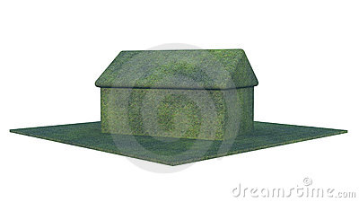 Green Vegetation House