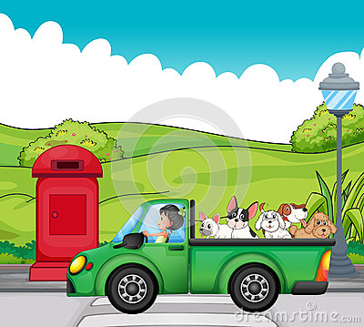 A green vehicle with dogs at the back
