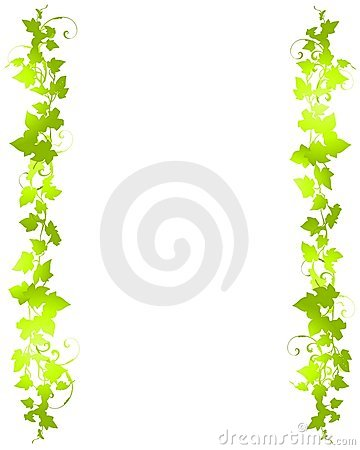 Green Vine Leaf Background Borders