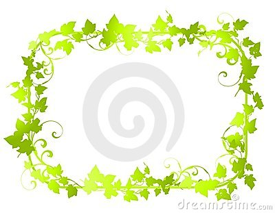 Green Vine Leaf Frame Borders 2