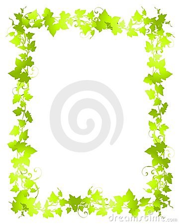 Green Vine Leaf Frame Borders