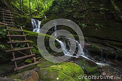 Green Water Fall
