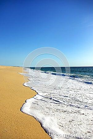 Free Green Waves. Stock Photo - 10565660