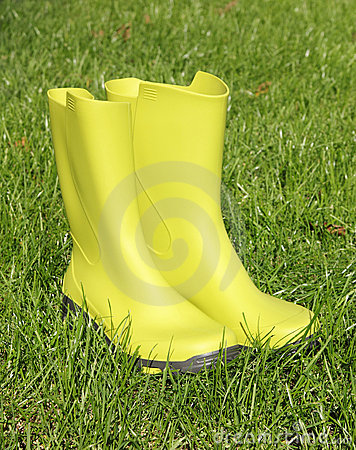 Free Green Wellingtons Stock Photography - 16617702