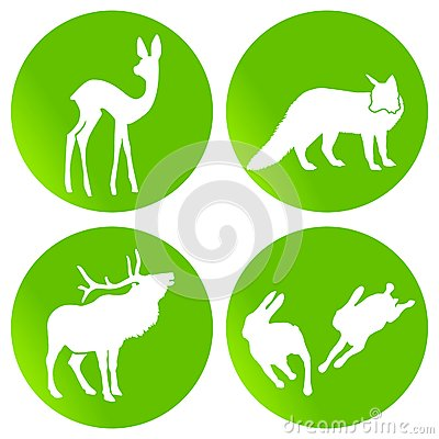Green wildlife