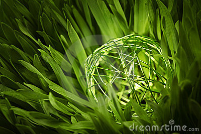 Green wire orb in meadow