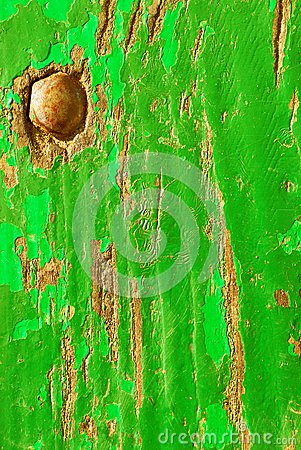 Green wood texture