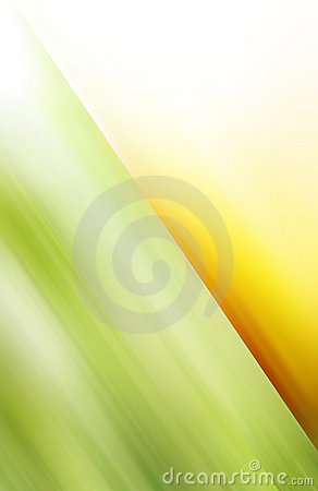 Green and yellow motive