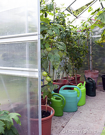 Greenhouse Close-up Stock Images - Image: 15726314
