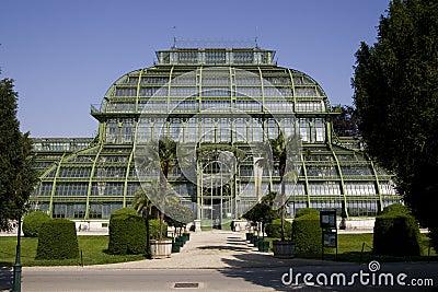 Greenhouse - Palmenhaus Schönbrunn
