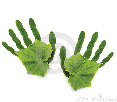 Greenpeace spring Ecological symbol  hand of natu
