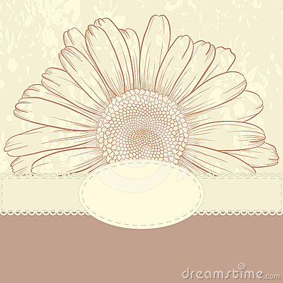 Greeting card with daisy.
