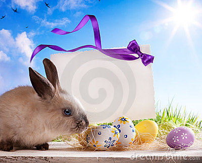 Greeting card Easter bunny and Easter eggs