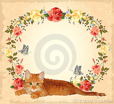 greeting card with ginger cat and roses