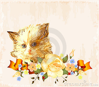 Greeting card with  ginger kitten