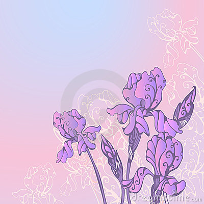 Greeting card with iris flowers