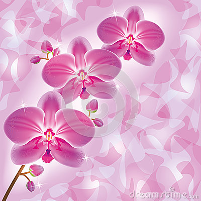 Greeting card with orchid in grunge style