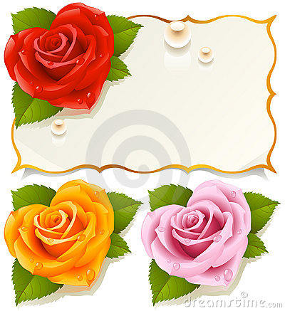 Greeting card with rose 5