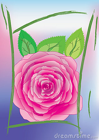 Greetings card with rose