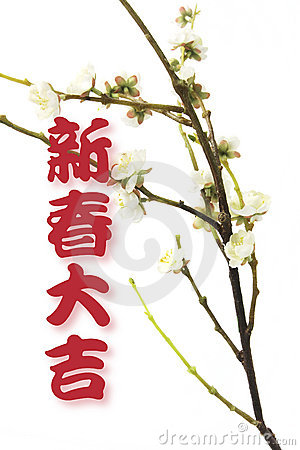 Greetings and  Plum Blossom