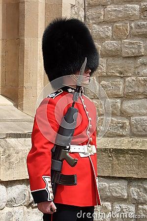 Free Grenadier Guard Stock Photos - 1190003