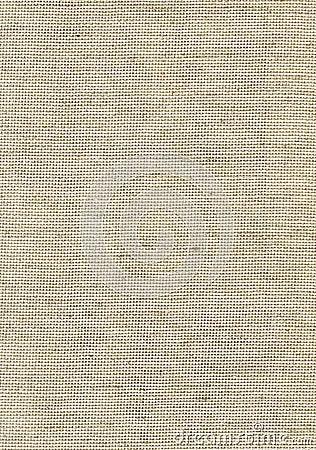 Grey canvas