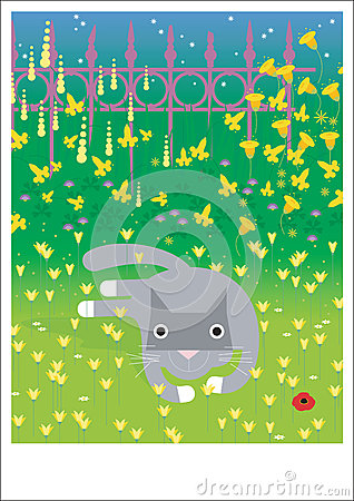 Grey cat lays on grass