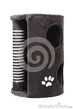 Grey cat scrather