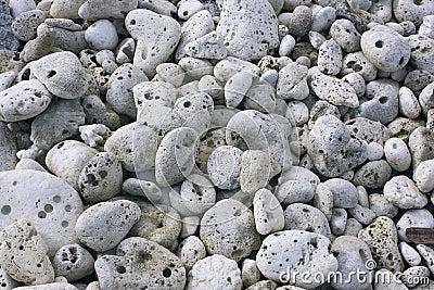 Grey coral stones.