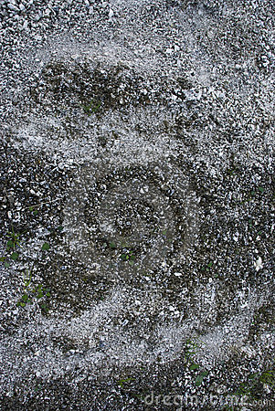 Grey ground texture with stones and sand