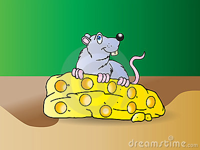 Grey Mouse eat big cheese